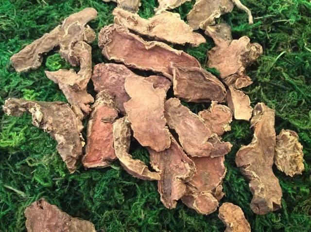 Родиола розовая (золотой корень) для мужчин: лечебные свойства для потенции