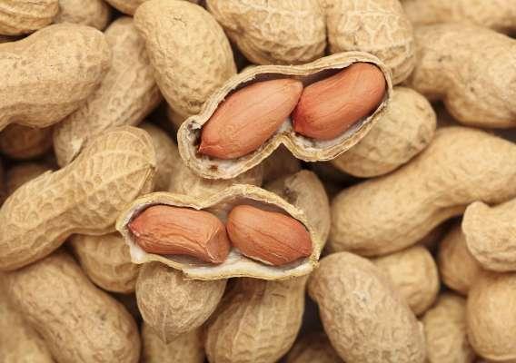 Мед и грецкие орехи для потенции: рецепт (пропорции), отзывы