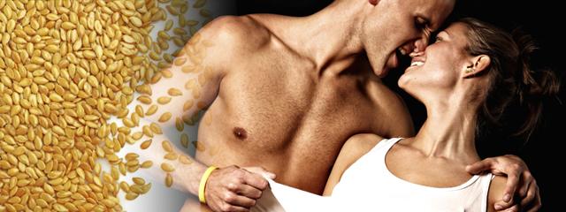 Кунжут для организма и потенции мужчины: польза и вред, 5 рецептов, отзывы