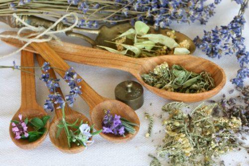 Ярутка полевая: применение мужчинам при импотенции, лечебные свойства