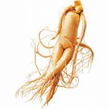 Агглютинация сперматозоидов в спермограмме у мужчин: степени, причины, лечение