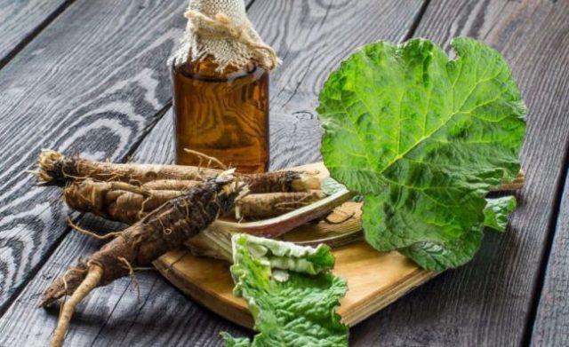 Корень лопуха от простатита: рецепты, лечение, отзывы мужчин