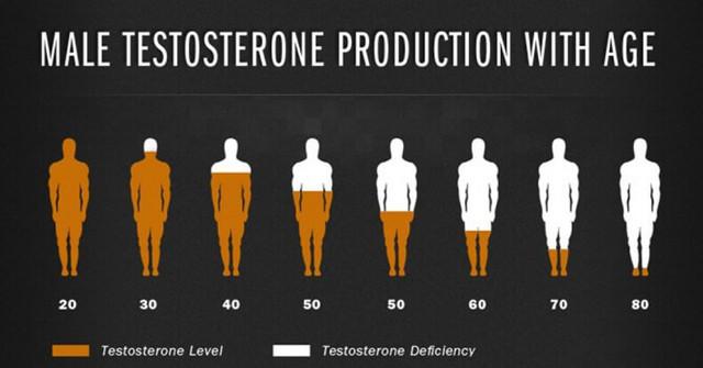 Тестостерон и потенция: влияние, повышение (препараты и продукты)
